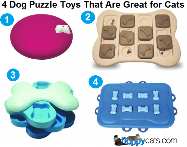 4-dog-puzzle-toys-that-are-great-for-cats