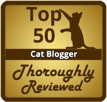 TOP 50 CAT BLOGGERS
