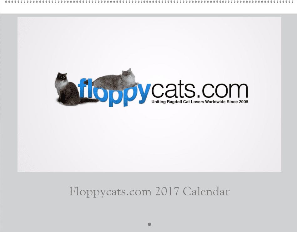 2017 Floppycats.com Wall Calendar