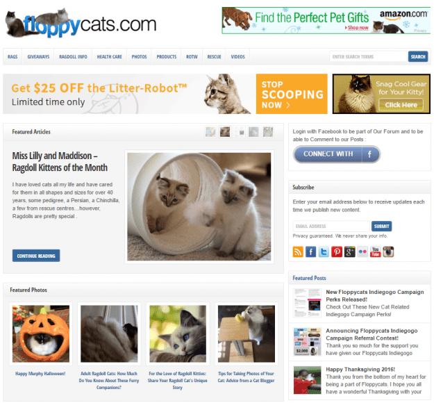 Old Floppycats Website 2016