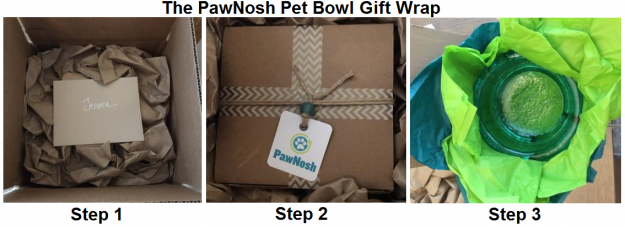 pawnosh-cubby-bowl-aqua-reader-product-review-opening-process