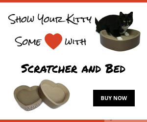 Cat Scratcher Toy and Bed Heart for Sleep and Play