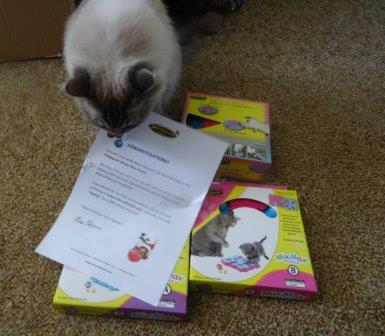 Nina Ottosson Cat Puzzle Toys Prize Pack Giveaway Winner Reports Back 2