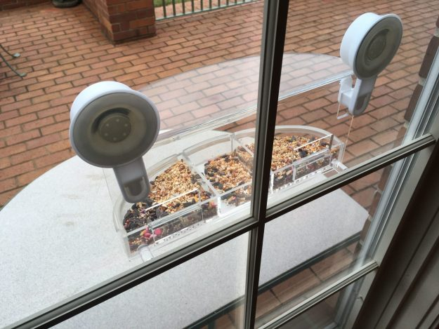 Window Bird Feeder WooPet Wild Bird Feeder Product Arrival and Installation Video - Floppycats IMG_3835