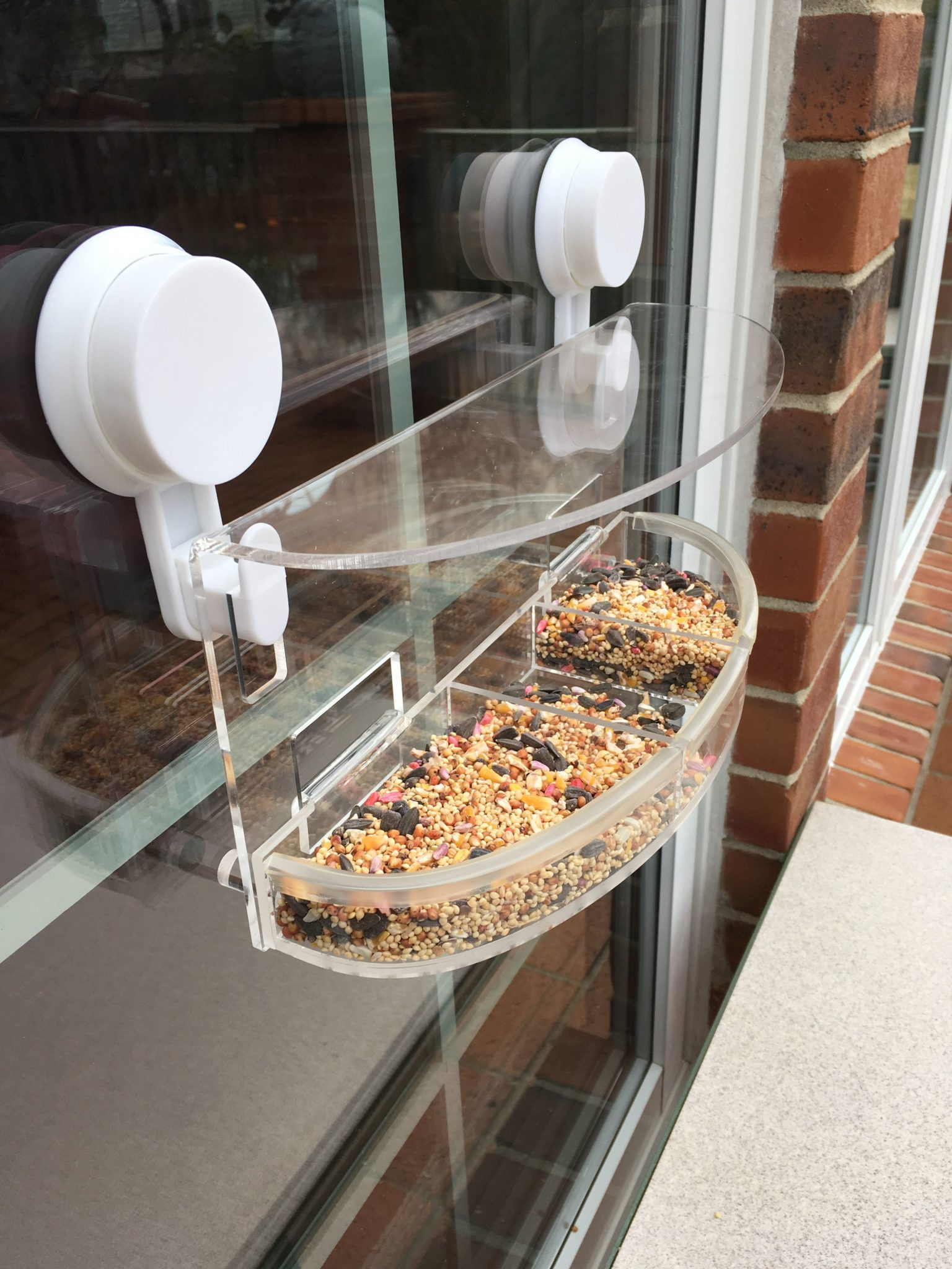 Window Bird Feeder WooPet Wild Bird Feeder Product Arrival and Installation Video - Floppycats IMG_3837