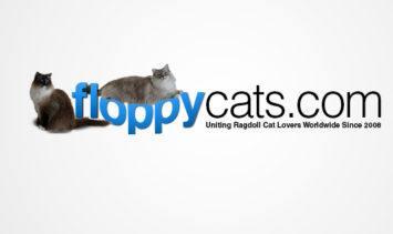 Floppycats Banner Logo 2017