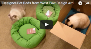 Designer Pet Beds from West Paw Design Arrive for a Product Review Unboxing