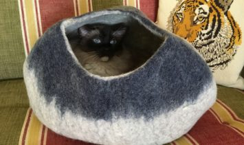 Kittycentric Cozy Cat Cave Bed