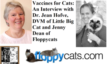 Vaccines for Cats An Interview with Dr Jean Hofve DVM of Little Big Cat and Jenny Dean of Floppycats