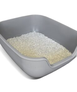 Petfusion BetterBox NON-STICK Litter Box Product Review