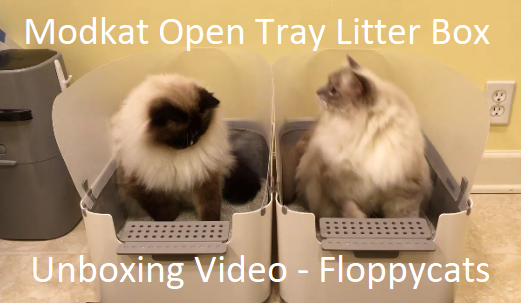 & Introducing the Modkat Open Tray Litter Box - Unboxing Video! Aboutintivar.Com