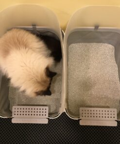 Modkat Open Tray Litterbox Product Review Floppycats Birds Eye View