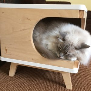 Cool Retro Modern Cat House Mid Century TV Looking Cat Bed from PurrFur Floppycats Trigg2