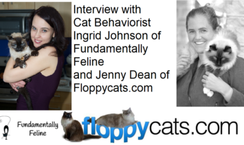 Interview with Cat Behaviorist Ingrid Johnson of Fundamentally Feline and Jenny Dean of Floppycats