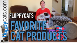 Floppycats Favorite Cat Products Video