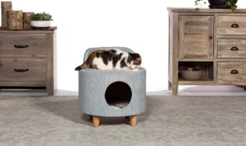 Prevue Pet Products Hollywood Chair May 2019 Giveaway