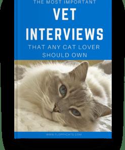 Floppycats Vet Interviews