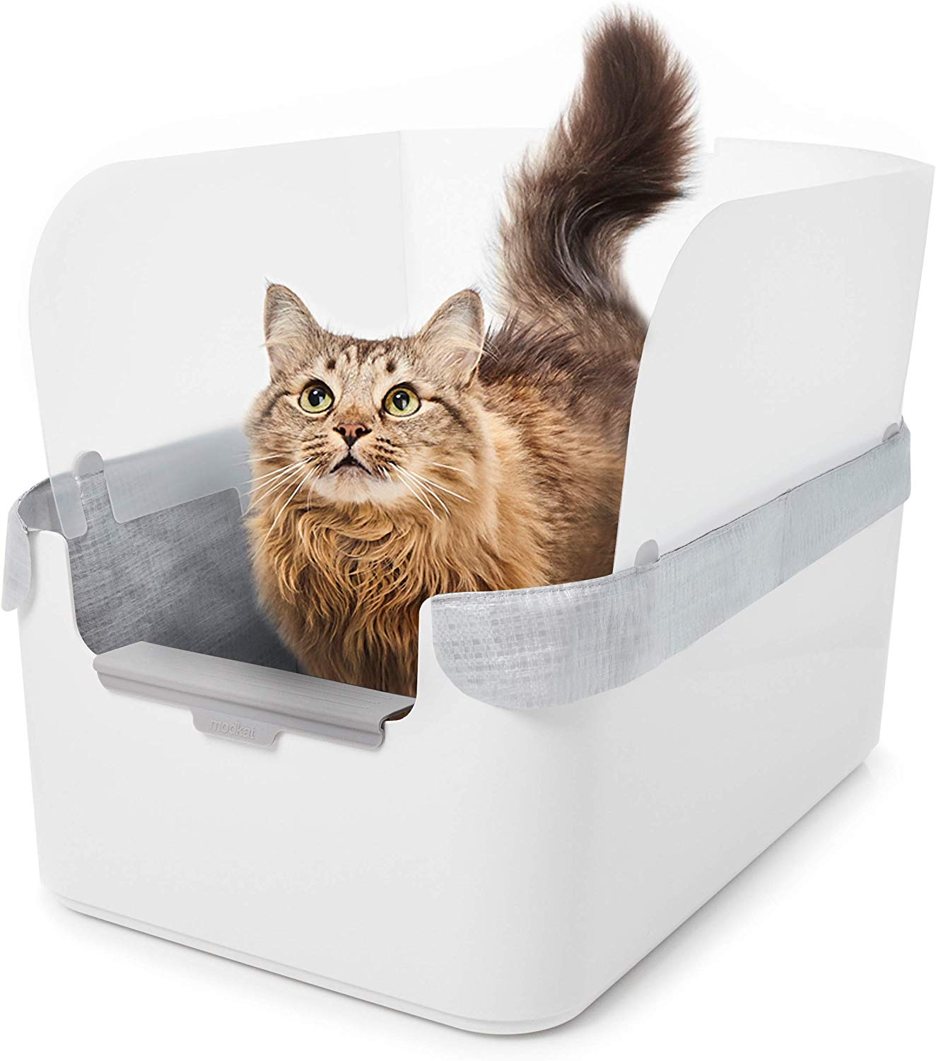 Best Litter Boxes for High Spraying Cats | High Side Litter Boxes