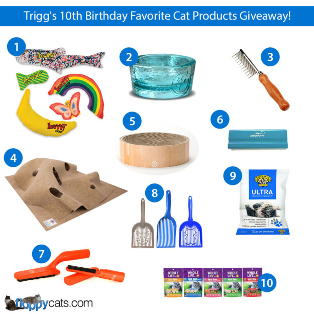 Trigg 10th Birthday Favorite Cat Products Giveaway Instagram
