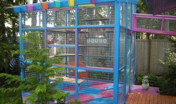 catio-cat-enclosure-exterior-colorful-catiospaces