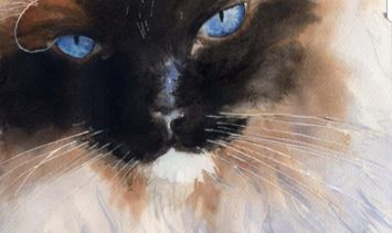 Cat Portrait Artist An Interview with Rachel Parker (3)