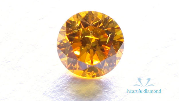Heart in Diamond Pets Pets Hair Ashes into a Diamond (2)