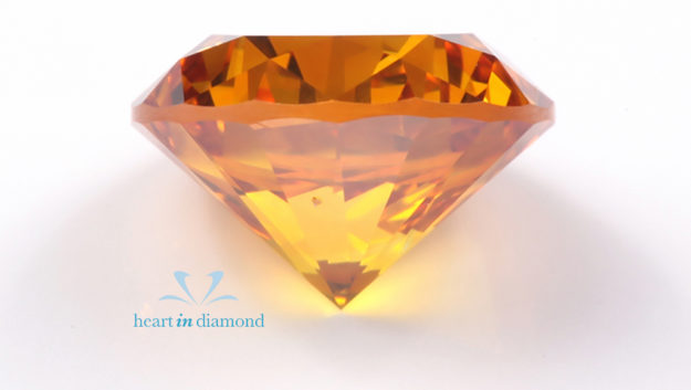 Heart in Diamond Pets Pets Hair Ashes into a Diamond