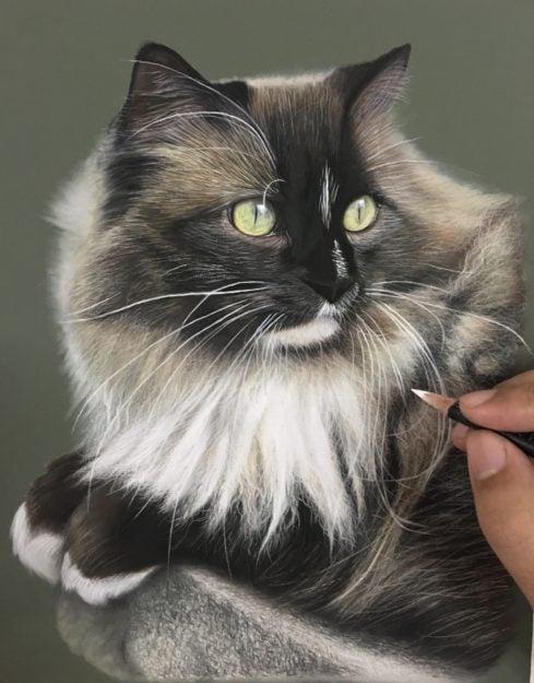 Ivan Hoo Cat Artist Painter IMG_4092
