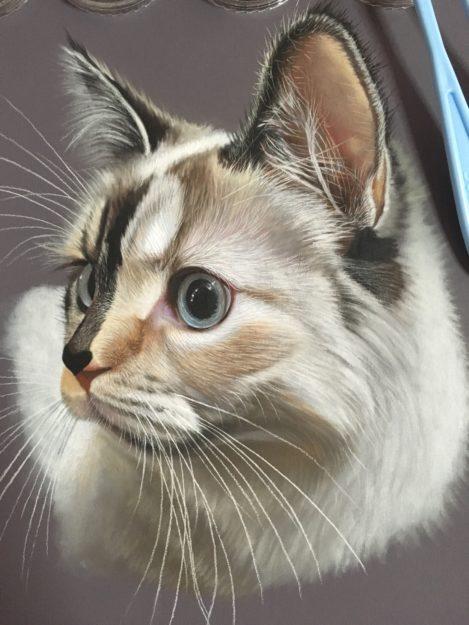 Ivan Hoo Cat Artist Painter IMG_8717
