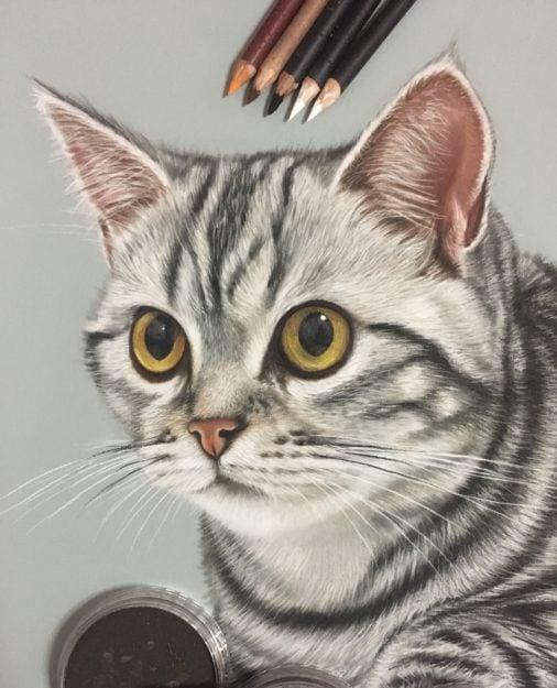 Ivan Hoo Cat Artist Painter IMG_8852