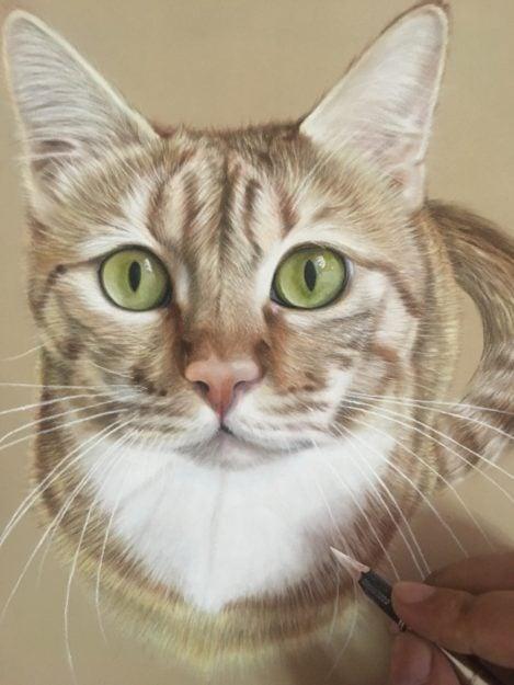 Ivan Hoo Cat Artist Painter IMG_9712