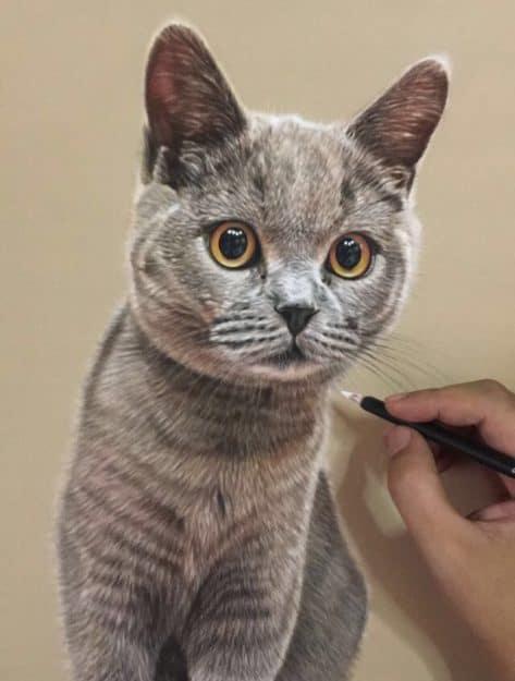 Ivan Hoo Cat Artist Painter IMG_9819
