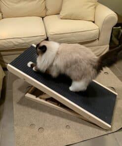 Scratchy Ramp incline cat scratcher best cat scratcher IMG_1847