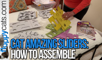 Stimulating Cat Puzzle CatAmazing Sliders Product Review HOW TO ASSEMBLE Floppycats Thumbnail