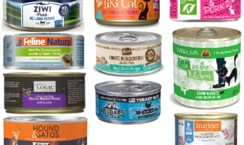 Cat Food for Chicken Allergies Canned Cat Food without Chicken