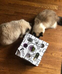 mentally stimulating cat toys - cat amazing sliders