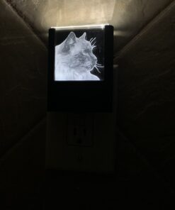 Custom Engraved Night Light IMG_3364