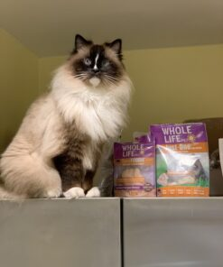 Healthy Cat Treat Whole Life Pet realFoodie Treats IMG_3572