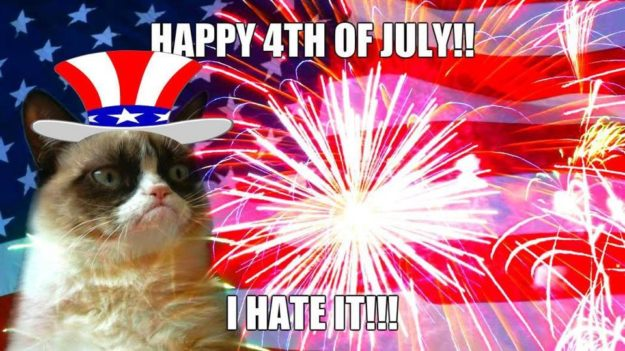 Happy 4th July From Grumpy Cat