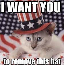 I WANT YOu 4th of July Cat Meme
