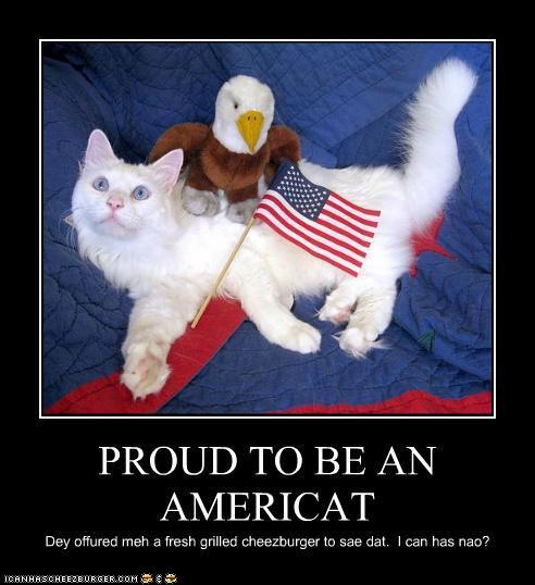 Proud to be an Americat 4th of July Cat Meme