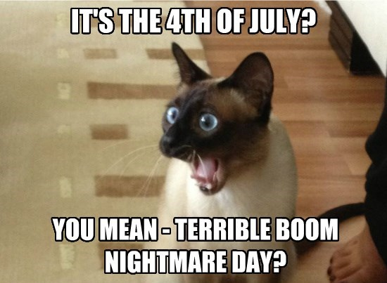 Terrible Day Boom Nightmare 4th of July Cat Meme