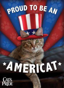 The Cute Little Americat 4th of July Cat Meme