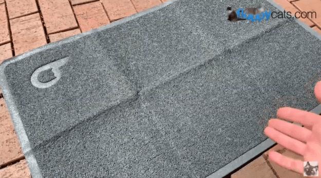 best Trap Litter Mat creases