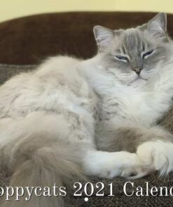 Floppycats 2021 Ragdoll Cat Calendar