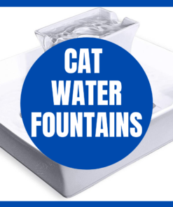 Cat Water Fountains
