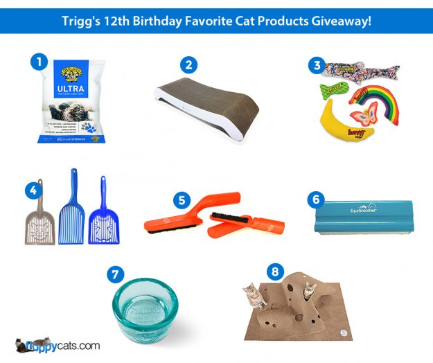 Cat Giveaway Product pictures