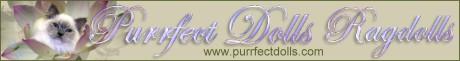 Purrfect Dolls banner