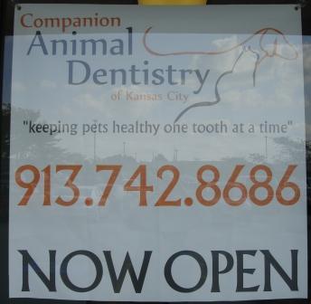 Rags Dental 9-23-08