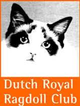 The Dutch Ragdoll Club